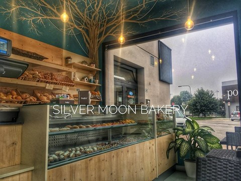 silvermoon3.jpg