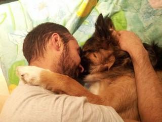 cane adottato.jpg
